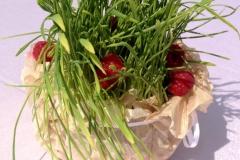 Фуршет на открытии жилого комплекса «Орлан Инвест Групп» от «Yaris Catering»30