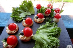 Солнечный пикник на детском дне рождения - кейтринг компания «Yaris Catering» 07