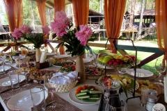 Солнечный пикник на детском дне рождения - кейтринг компания «Yaris Catering» 11